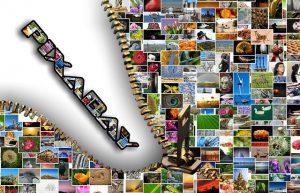 Blog Bilder Bilderdatenbank